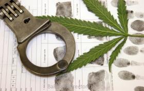 Saldana Family - Drug Charges